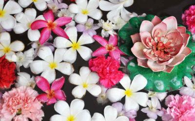 Best Garden and Flower Shows 2019